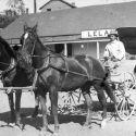 Horse-drawn carriage Austin Nevada