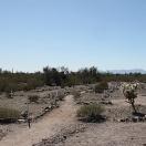 Vulture City Cemetery