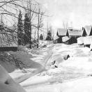 Cornucopia in Winter