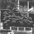 Hotel Lincoln - Cornucopia