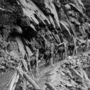 Trailing timbers up to Tomboy mine
